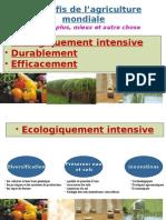 Les défis de l'agriculture mondiale - Produire plus, mieux et autre chose