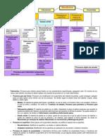 Procesos de Manufactura Uva