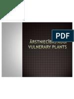 Vulnerary Plants in Latvia (Nordplus, PP made by Liga)