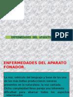 APARATO FONATORIO