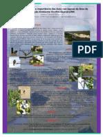 A biodiversidade e importância das Aves nas lagoas da Área de Proteção Ambiental Bonfim-Guaraíra/RN.