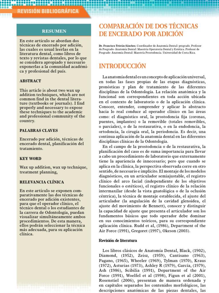 Magnífico Maestría Anatomía Bandera - Imágenes de Anatomía Humana ...