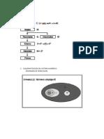 Clasificacion_Sistema_Numerico