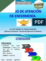 PROCESO DE ENFERMERIA PAE 2011