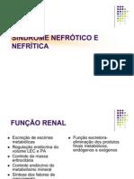 aula_de_sind_nefrotica_e_nefritica_pp