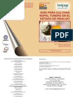 Guia Nopal Hidalgo PDF