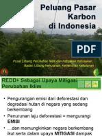 Peluang Pasar Karbon Di Indonesia