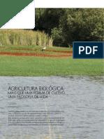 AGRICULTURA BIOLÓGICA - MAIS QUE UMA FORMA DE CULTIVO UMA FILOSOFIA DE VIDA.