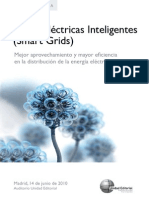4-programa-redes-inteligentes (1)