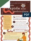 Lombrichi - Guida Rapida Alla Lombrichicoltura