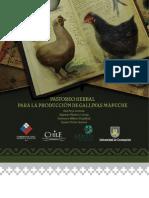 Pastoreo Herbal para la Producción de Gallinas Mapuche.