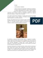FyF CLXXIII Oro azul, tecnología y miseria