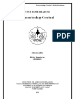 Hemorheologi Cerebral