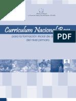 Curriculum Nacional Base - Formacion Inicial de Docentes Del Nivel Primario