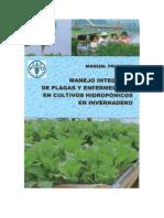 Manual Practico Hidroponia