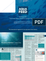 Update in Phosphorus Nutrition in Aquaculture