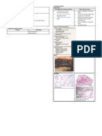 Pulmonary Vascular Diseases