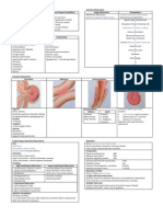Pathology of Intestinal Obstruction