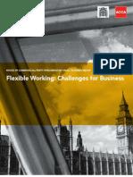 Flexible Working Report
