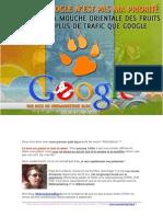 Web Marketing Blog - Google Et Les Mouches