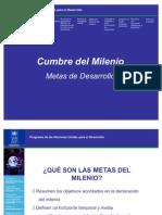 Metas Del Milenio (2)