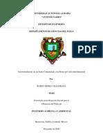 Fitorremediacion PDF