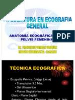 7. Anatomia Ecografica de La Pelvis Femenina