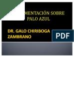 PRESENTACION PALO AZUL