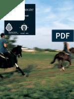 A Cavallo delle Romagne