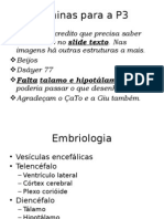 16144527 Embrio Laminas Prova 3