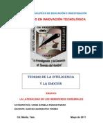 ensayo Lateralidad
