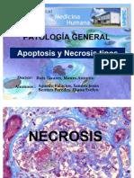 Apoptosis y Necrosis Tipos.ok