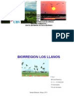 Bi or Region Los Llanos I (2)