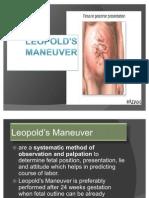 Leopold's Maneuver