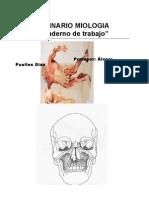 Manual Musculos Lamina Rio) Anatomia