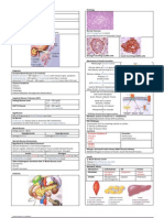 Pathology of Diabetes