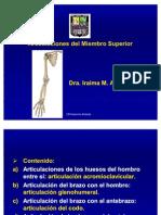 articulacionesdelmiembrosuperior-090527115303-phpapp01