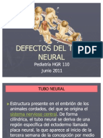 Defectos de Tubo Neural