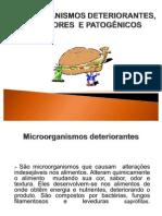 MICROORGANISMOS_INDICADORES
