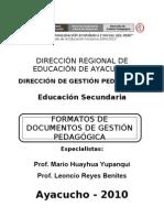 DREA DOCUMENTOS TÉCNICO PEDAGÓGICOS 2010 Completo Nuevo