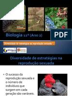 BG 17 - Diversidade de Estratégias na reprodução sexuada