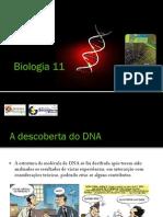BGPT 1 - Modelos de DNA