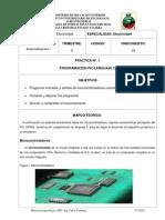 PRACTICA 01 PIC Automatizacion I-Camargo