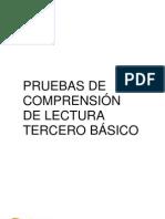 PRUEBAS DE COMPRENSIÓN DE LECTURA 3º BÁSICO