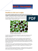 Mw0809 Tecno Alghe Assorbono CO2