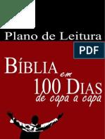 plano-100-dias-resumido