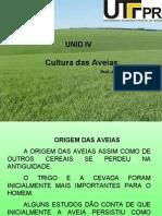 Cultura Das Aveias;