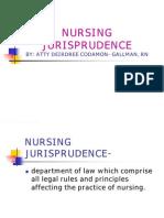 6541925 Nursing Jurisprudence