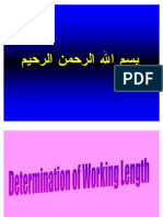 Working Length Determination[Lecture by Dr.Ahmed Labib @AmCoFam]