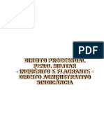 Manual de IPM Prisao Em Flagrante e Sindicancia